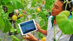 Hỗ trợ thúc đẩy sáng tạo trong doanh nghiệp nông nghiệp