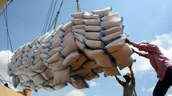 An Giang: Kim ngạch xuất khẩu gạo 4 tháng tăng 33%