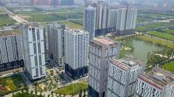 Phó Thủ tướng  yêu cầu rà soát việc thu hồi đất của doanh nghiệp đã cổ phần hóa