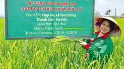 Người đi tìm giá trị hạt ngọc Việt