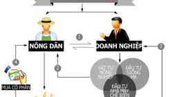 Bến Tre: Hình thành mối liên kết tiêu thụ giữa nông dân với doanh nghiệp