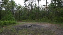 Bí ẩn mảnh đất tròn nhỏ giữa rừng nhưng cây, cỏ không thể mọc