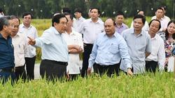 """Hai năm """"thuận tự nhiên"""", diện mạo Đồng bằng Sông Cửu Long thay đổi ra sao?"""