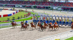 Đà Nẵng: Đề xuất cắt đất KCN cho công ty Trung Quốc làm trường đua ngựa