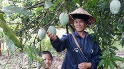 Yên Châu chú trọng nâng cao thu nhập cho người dân