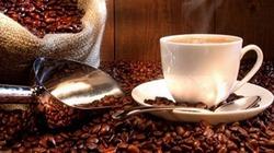 Giá cà phê giảm mạnh gần 2.000 đồng/kg ở Kon Tum trong tuần qua