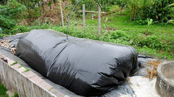 Không xây hầm biogas để đối phó xả nước thải chăn nuôi