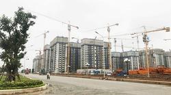 Hội Môi giới bất động sản: Thị trường condotel ảm đạm, tỷ lệ hấp thụ thấp