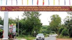 4 tỉnh, thành phố có 100% số xã đạt chuẩn nông thôn mới