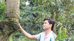 Nông dân Tam Bình thu tiền tỷ từ loài quả gai nhọn chi chít