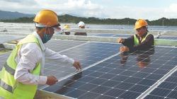 Hệ lụy từ đầu tư ồ ạt nhà máy điện mặt trời