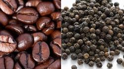 Giá cà phê hôm nay 2/8: Tiếp tục giảm 500 đồng/kg, giá cao su lao dốc 17%