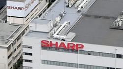 'Né' thương chiến, Sharp lên kế hoạch chuyển nhà máy sang Việt Nam