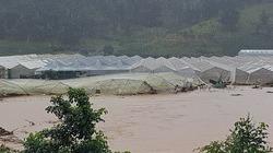 Nước mắt tuôn rơi ở Lâm Đồng: Mất cả trăm tỷ sau mưa lũ kinh hoàng