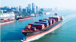 Hàng hoá thông qua cảng biển tiếp đà tăng trưởng hậu Covid-19