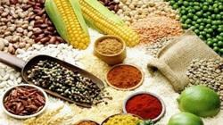 FAO: Giá lương thực, thực phẩm thế giới cao nhất trong nửa thập kỷ