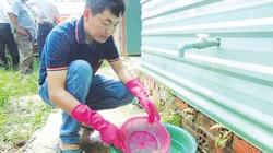 Giám đốc nghỉ việc, về quê nuôi lươn bán sang Nhật