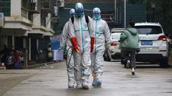 Viện virus Vũ Hán chính thức phủ nhận liên quan đến ca nhiễm virus corona đầu tiên