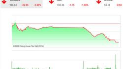 Chứng khoán ngày 31/1: VnIndex rơi tự do cùng cổ phiếu hàng không