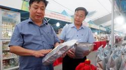 Hà Nội: Hàng trăm đặc sản OCOP quy tụ, nhiều hoạt động hấp dẫn khiến du khách thích thú