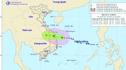 Khẩn: Bão số 6 đã hình thành, sầm sập tiến vào Quảng Nam - Bình Định