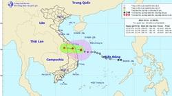 Khẩn cấp: Bão số 6 đã tiến sát vùng biển Quảng Nam - Bình Định, đổ bộ đất liền trong hôm nay