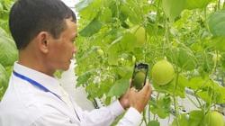 Nông dân xuất sắc mê mẩn trải nghiệm nhà trồng rau áp dụng công nghệ điều hòa khí hậu độc đáo của VinEco