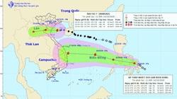 Bão số 7 suy yếu khi vào vùng biển Thái Bình - Nghệ An