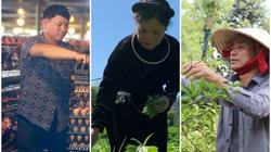 """Phải lòng """"cỗ máy nhả vàng"""" kiếm tiền tỷ, trồng la liệt các loại trái cây đặc sản thu nghìn USD"""