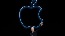 Tin công nghệ (14/10): Lộ giá bán iPhone 12 tại Việt Nam, người dùng bất mãn với Apple