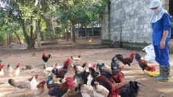 Công nghệ blockchain cải tiến dây chuyền sản xuất nông nghiệp