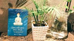 """""""Làm việc kiểu Đức Phật"""" - cuốn sách thay đổi mạnh mẽ đời sống nơi công sở"""