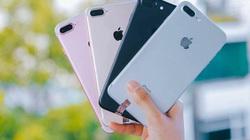 """Mua iphone cũ cần trang bị những kiến thức này để tránh """"cú lừa"""""""