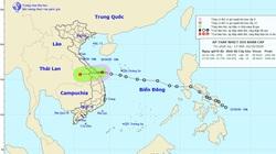 Áp thấp nhiệt đới đã hoành hành trên vùng biển Đà Nẵng - Quảng Ngãi, cảnh báo Thừa Thiên - Huế mưa rất to