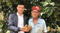 Cho cây ra trái đặc sản bán đắt tiền ở chung nhà với cà phê, ông nông dân này bất ngờ thu hàng trăm triệu