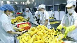 Hà Nội xuất khẩu 9 tháng đạt hơn 12 tỷ USD