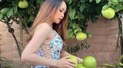"""""""Gái nhảy"""" Minh Thư mặc bikini hái bưởi vườn nhà giữa mùa Covid-19"""