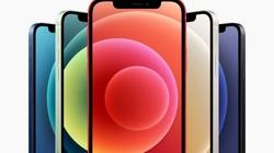 Đang dùng iPhone X có nên nâng cấp lên iPhone 12?