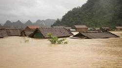Bộ trưởng Nguyễn Xuân Cường cảnh báo nguy cơ khi hồ đập miền Trung đã đầy nước
