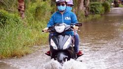 Cà Mau: Sau hạn mặn kinh hoàng, dân vùng ngọt hóa lại bì bõm lội nước ngập lụt, học sinh 2 huyện phải nghỉ học