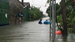 Hà Tĩnh: Nước dâng cao kỷ lục, người dân oằn mình trong lũ