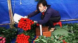 Cận ngày Phụ nữ Việt Nam, giá hoa hồng Đà Lạt tăng vọt lên hơn 10.000 đồng/bông