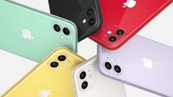 iPhone 11 doanh số khủng, giá bán hiện tại bao nhiêu?