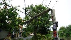 Bộ Xây dựng: Nguyên nhân gãy đổ cột điện bê tông cốt thép?