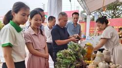 Tổ chức đấu giá lan đột biến, sinh vật cảnh, ủng hộ đồng bào bị lũ lụt ở miền Trung