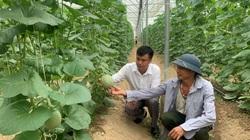 Chuyển đổi sản xuất đúng hướng, Bắc Giang xuất hiện nhiều tỷ phú nông dân
