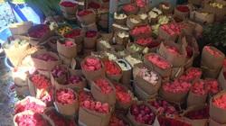Giá hoa tươi đồng loạt giảm trước ngày 20/10