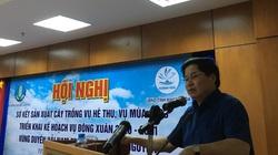 Vụ đông xuân ở Nam Trung Bộ, Tây Nguyên rất quan trọng, Bộ NNPTNT lưu ý điều gì?