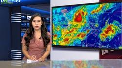 Bản tin Thời sự Dân Việt ngày 23/10: Bão số 8 có thể giật cấp 15 và những hình ảnh ấm lòng mùa lũ