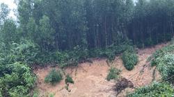 Quảng Bình huy động 60 người vào rừng tìm hai người mất tích